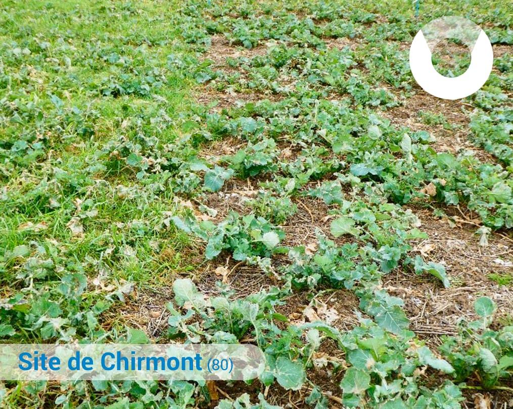 Site-de-Chirmont