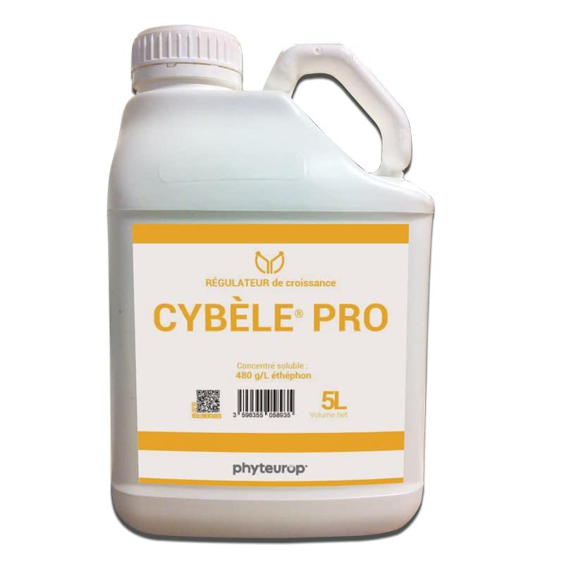 Phyteurop_3596355058935-Cybele-pro-5L